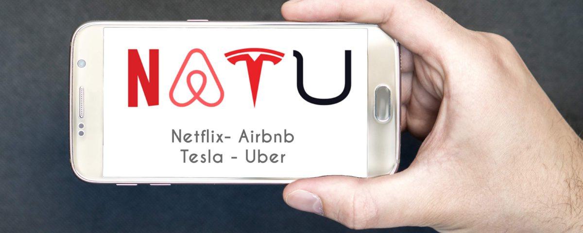 représentation des NATU 4 grandes entreprises en silicon valley netflix, airbnb, tesla et uber